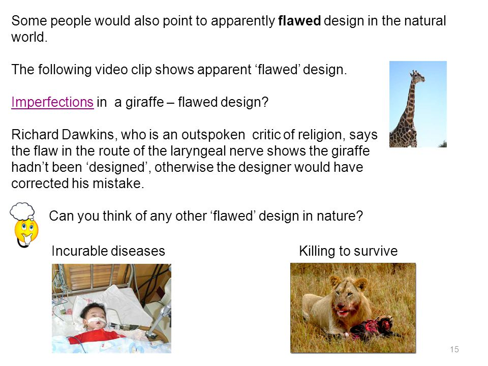 Some people would also point to apparently flawed design in the natural world.