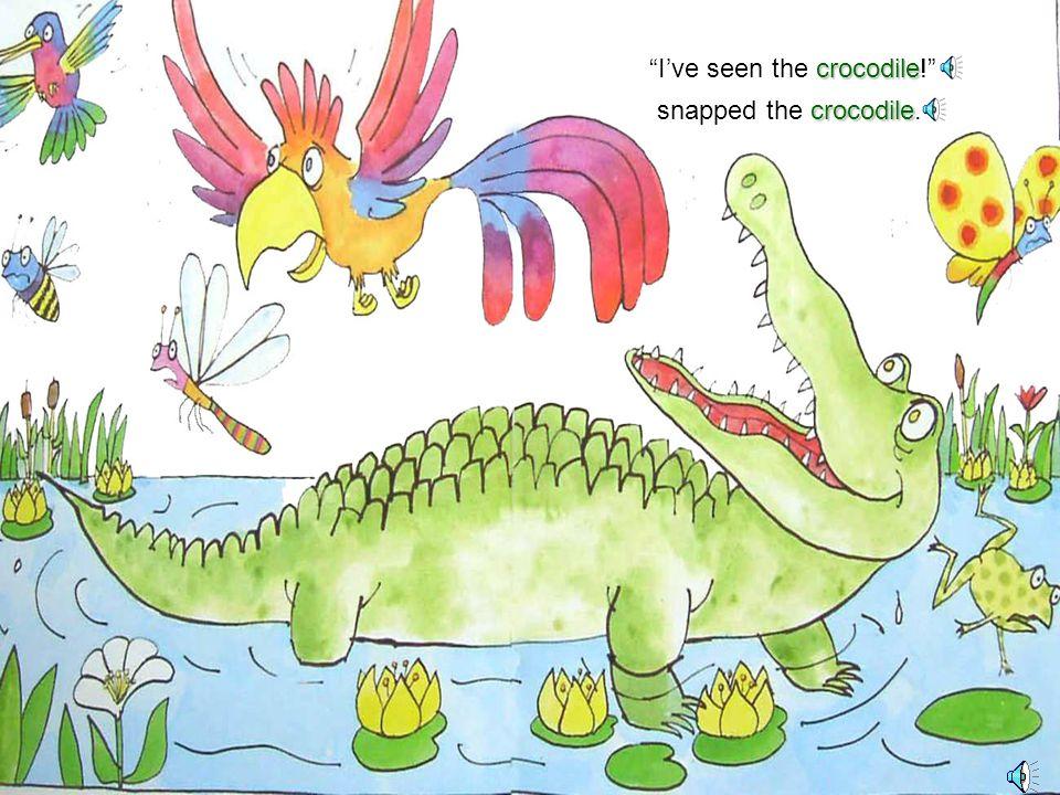 crocodile No one'seen the crocodile! parrot said the parrot dragonfly and the dragonfly bee and the bee butterfly and the butterfly hummingbird and the hummingbird frog and the frog.
