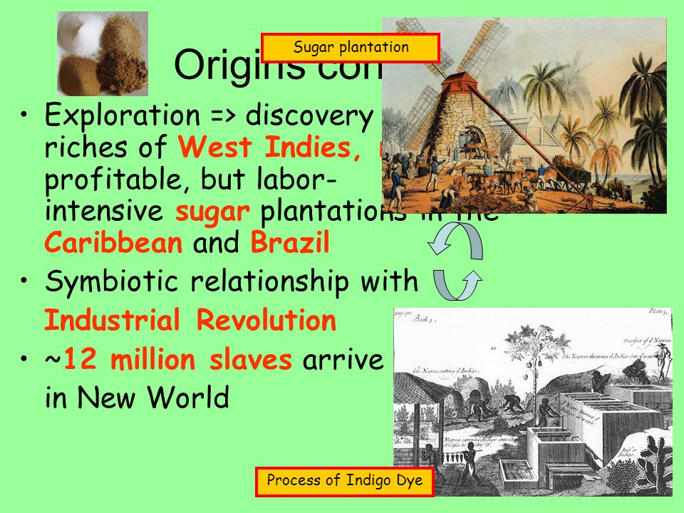 Origins continued. Exploration => discovery of abundant riches of West Indies, need labor for profitable, but labor- intensive sugar plantations in th