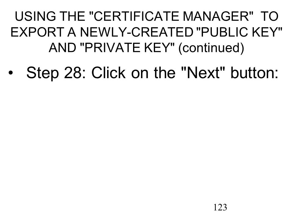 123 USING THE CERTIFICATE MANAGER TO EXPORT A NEWLY-CREATED PUBLIC KEY AND PRIVATE KEY (continued) Step 28: Click on the Next button: