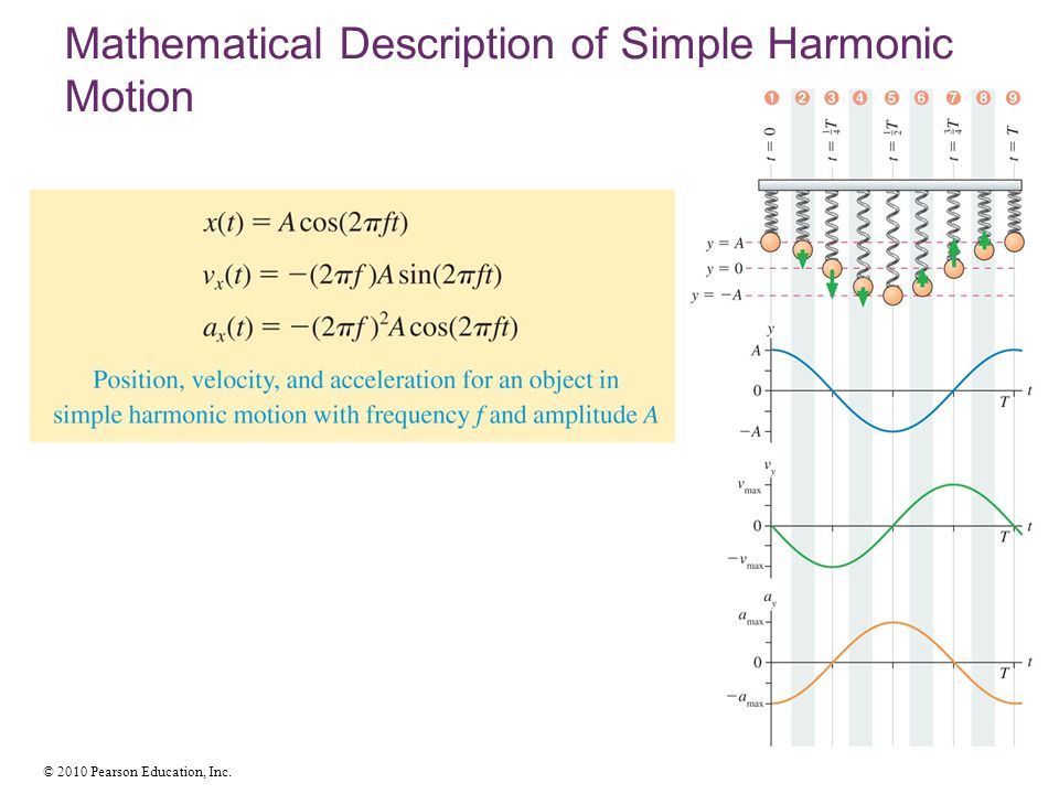 © 2010 Pearson Education, Inc. Mathematical Description of Simple Harmonic Motion