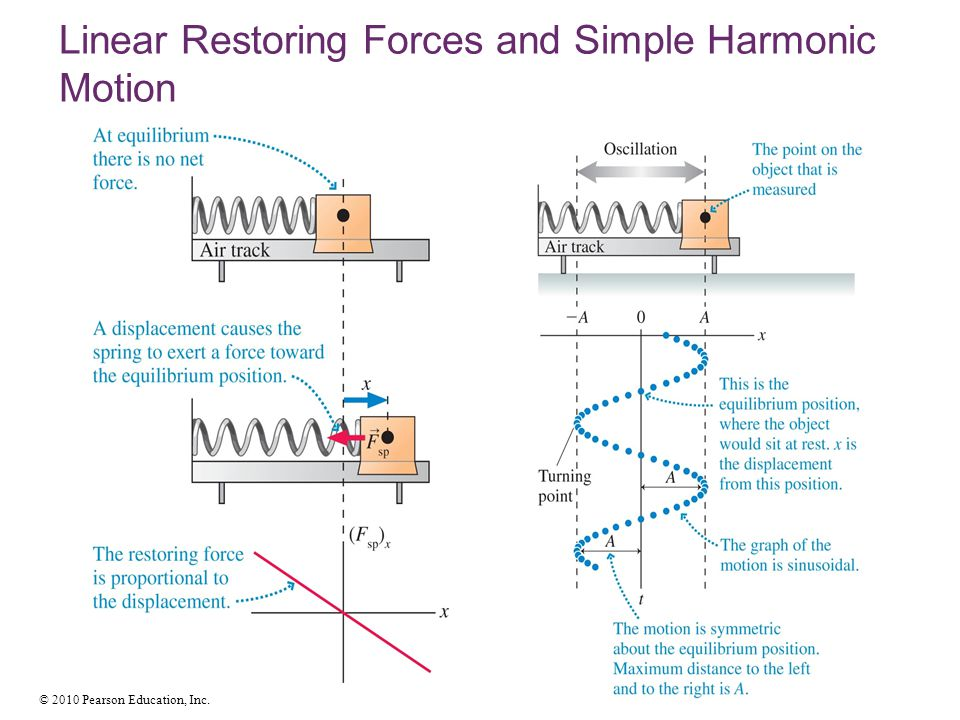 © 2010 Pearson Education, Inc. Linear Restoring Forces and Simple Harmonic Motion