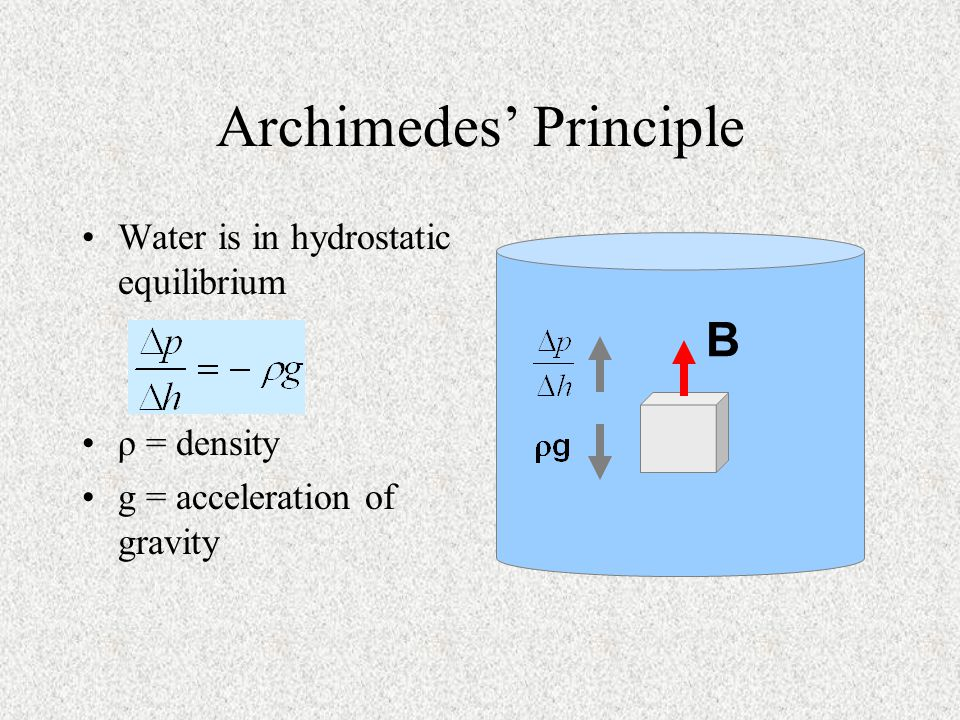 Archimedes' Principle Water is in hydrostatic equilibrium ρ = density g = acceleration of gravity B