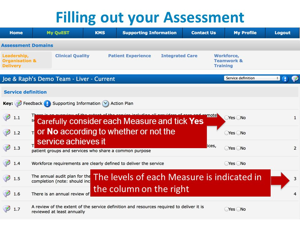 Filling out your Assessment The levels of each Measure is indicated in the column on the right Carefully consider each Measure and tick Yes or No acco