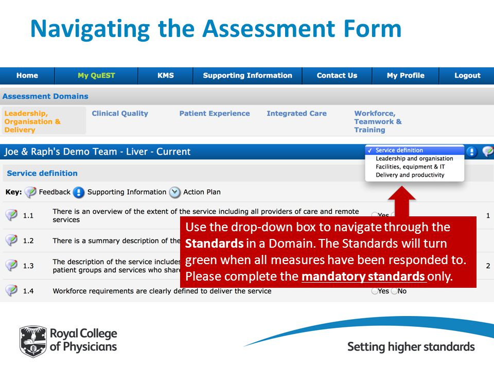 Navigating the Assessment Form Use the drop-down box to navigate through the Standards in a Domain. The Standards will turn green when all measures ha