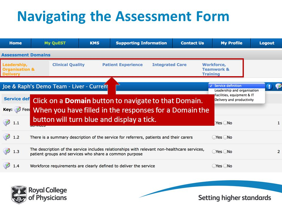Navigating the Assessment Form Click on a Domain button to navigate to that Domain. When you have filled in the responses for a Domain the button will