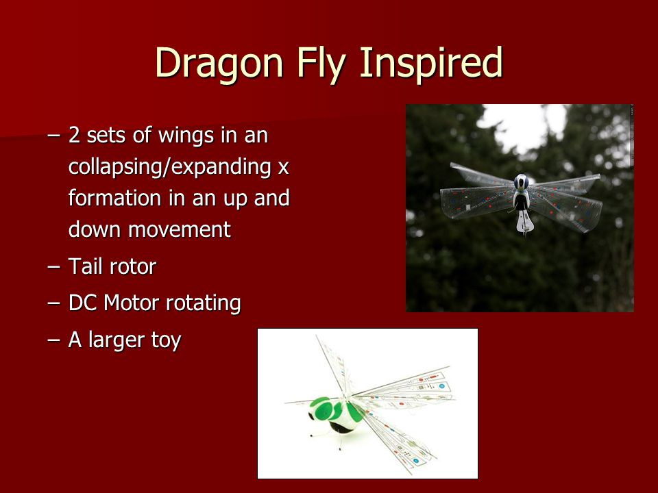 Dragon Fly Inspired –2 sets of wings in an collapsing/expanding x formation in an up and down movement –Tail rotor –DC Motor rotating –A larger toy