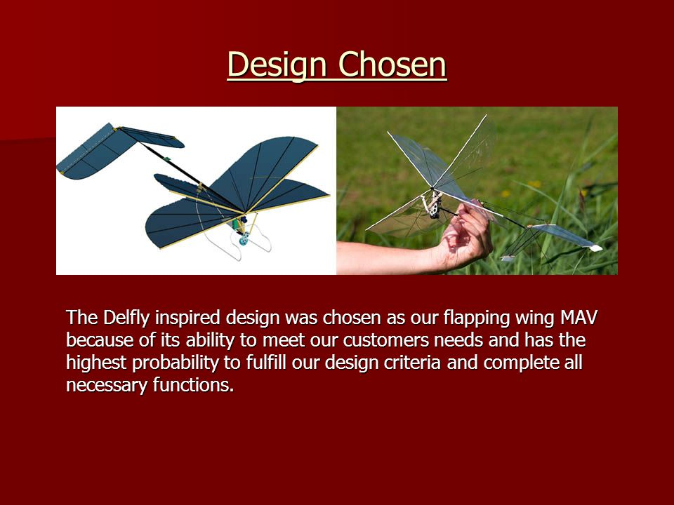 Design Chosen The Delfly inspired design was chosen as our flapping wing MAV because of its ability to meet our customers needs and has the highest pr