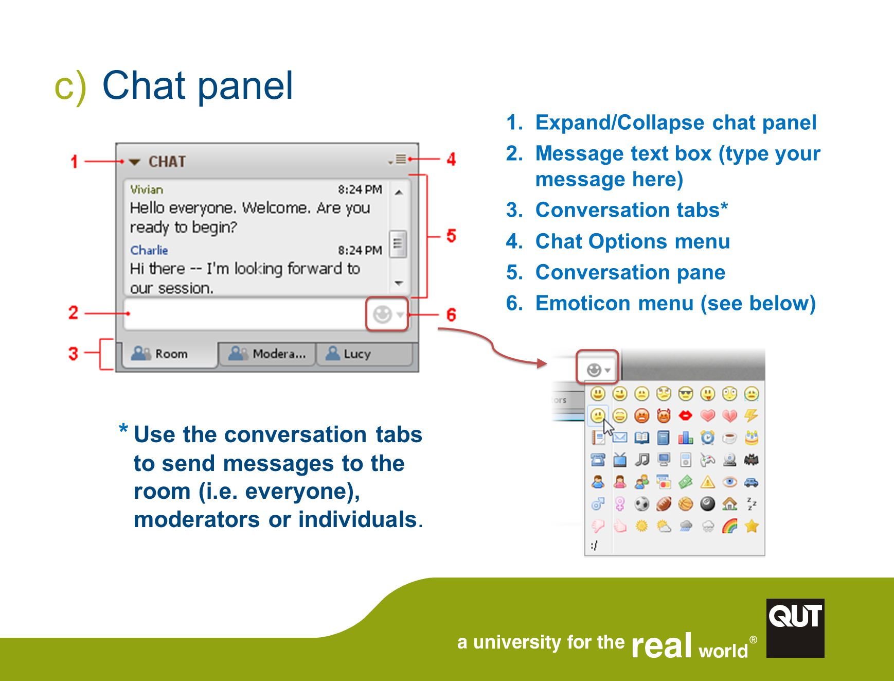 c) Chat panel 1.Expand/Collapse chat panel 2.Message text box (type your message here) 3.Conversation tabs* 4.Chat Options menu 5.Conversation pane 6.Emoticon menu (see below) * Use the conversation tabs to send messages to the room (i.e.