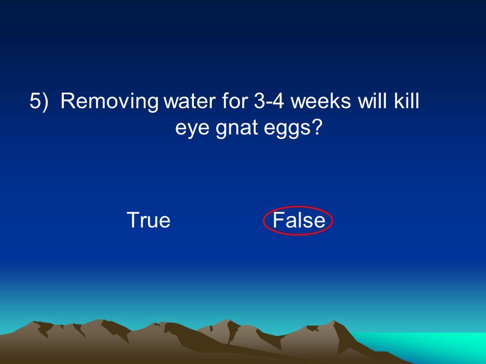 5) Removing water for 3-4 weeks will kill eye gnat eggs? TrueFalse