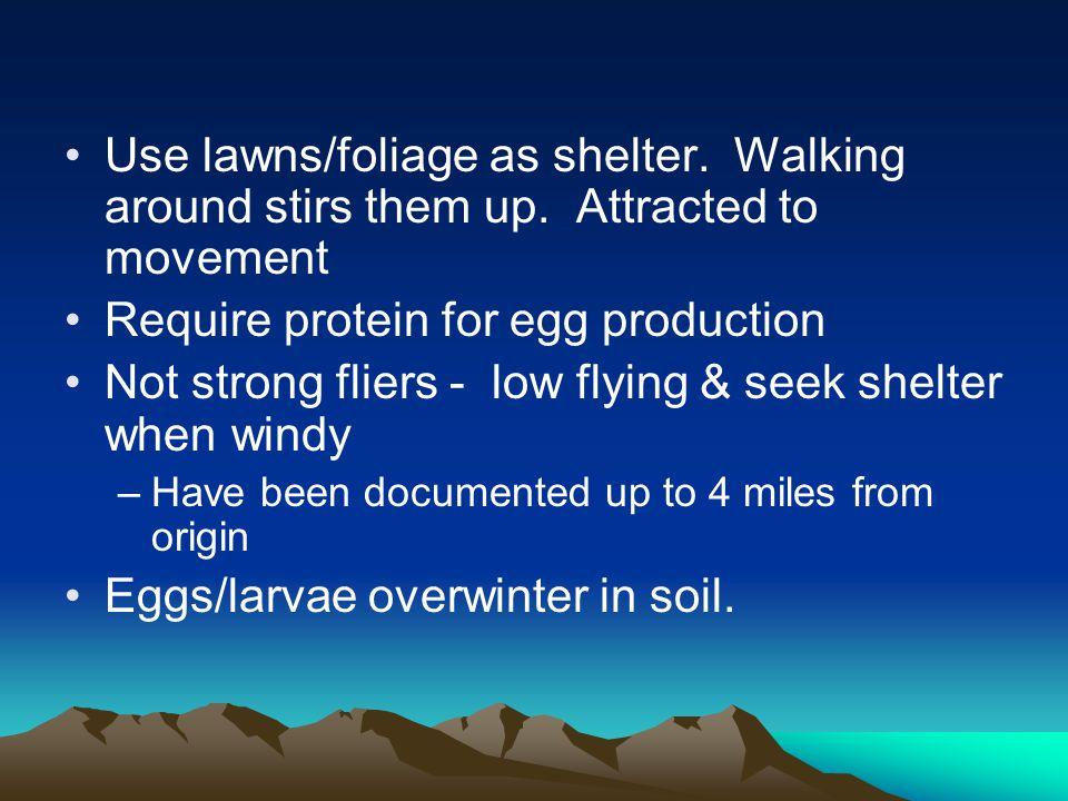 Use lawns/foliage as shelter. Walking around stirs them up.
