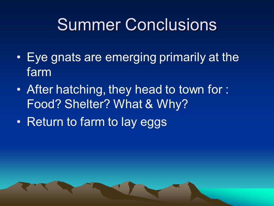 Summer Conclusions Eye gnats are emerging primarily at the farm After hatching, they head to town for : Food.