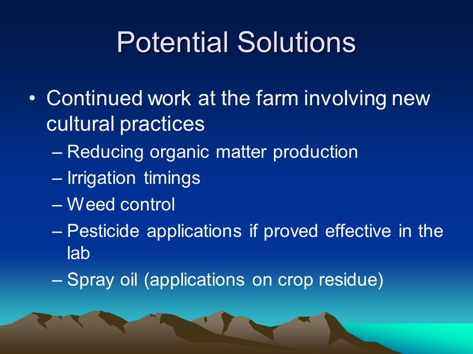 Potential Solutions Continued work at the farm involving new cultural practices –Reducing organic matter production –Irrigation timings –Weed control –Pesticide applications if proved effective in the lab –Spray oil (applications on crop residue)