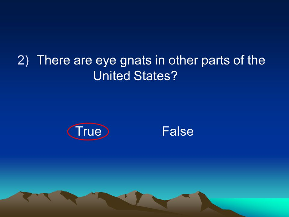 2)There are eye gnats in other parts of the United States? TrueFalse