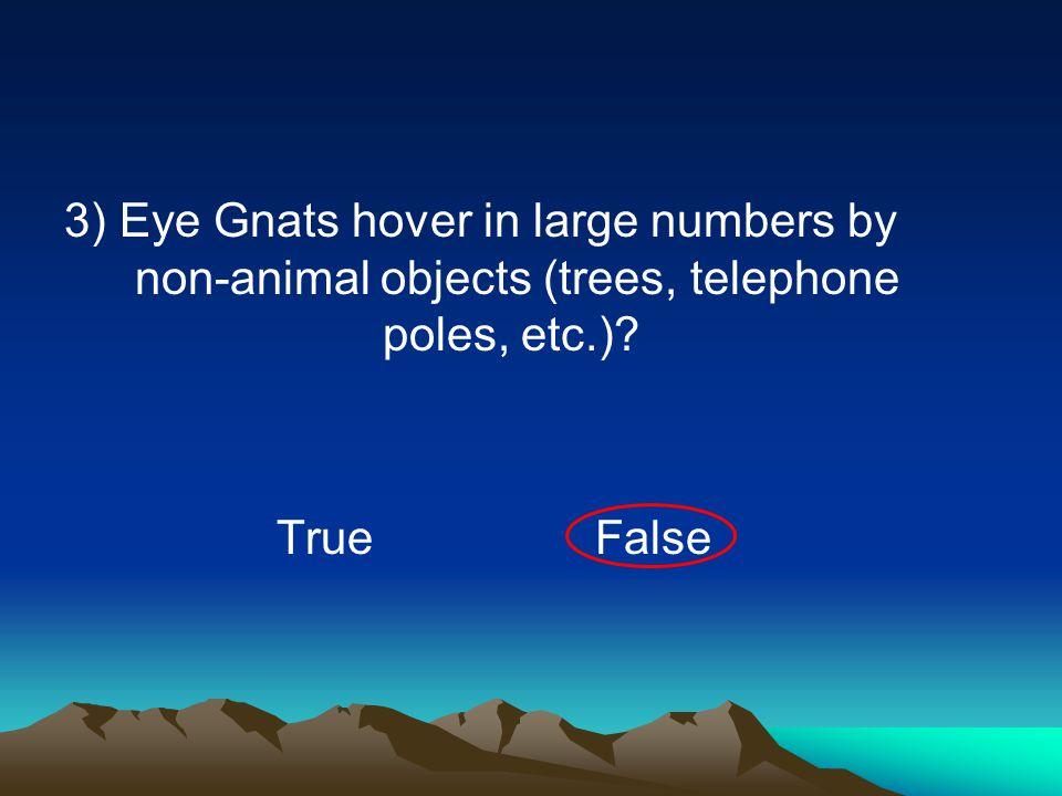 4) Eye Gnats will lay their eggs in manure? TrueFalse