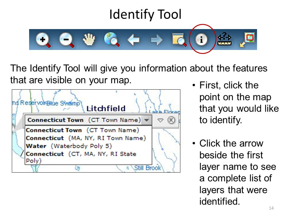 Identify Tool The Identify Tool will give you information about the features that are visible on your map.
