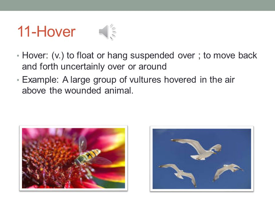 11-Hover Hover: (v.) to float or hang suspended over ; to move back and forth uncertainly over or around Example: A large group of vultures hovered in the air above the wounded animal.