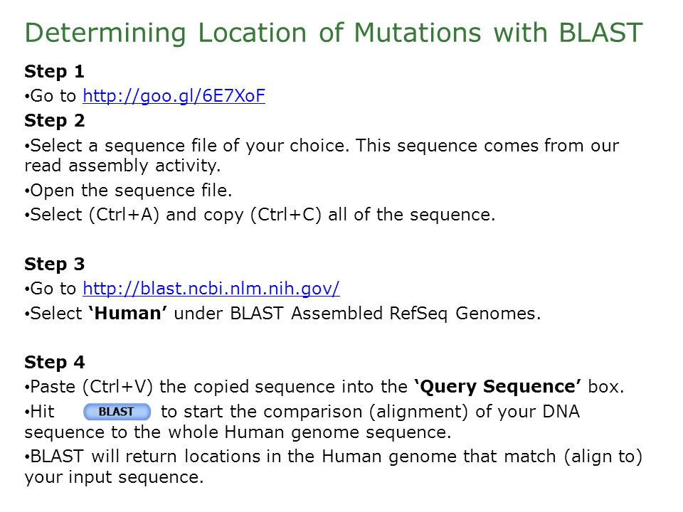 Determining Location of Mutations with BLAST Step 1 Go to http://goo.gl/6E7XoFhttp://goo.gl/6E7XoF Step 2 Select a sequence file of your choice.