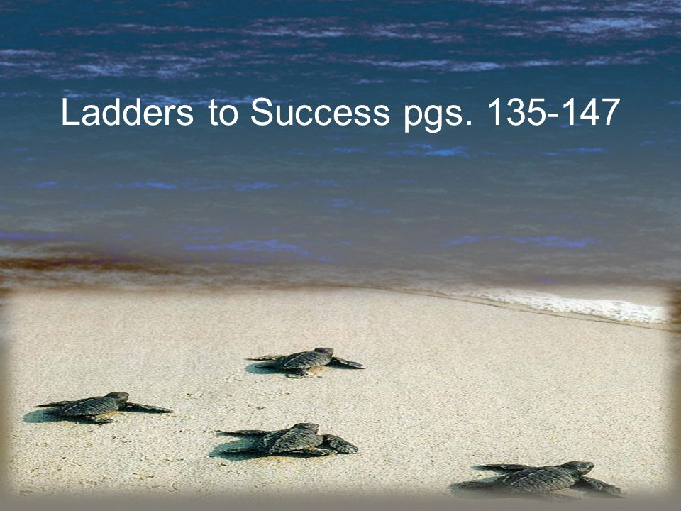 Ladders to Success pgs. 135-147