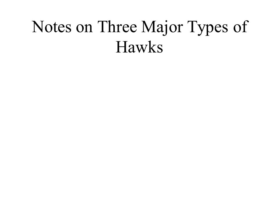 Notes on Three Major Types of Hawks