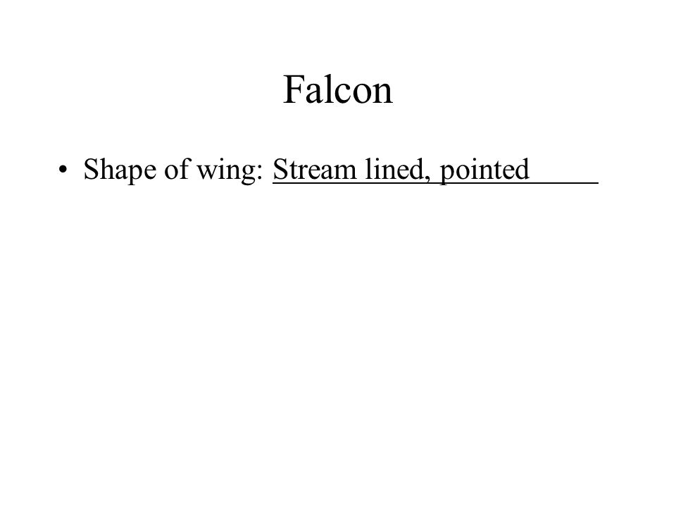Shape of wing: Stream lined, pointed