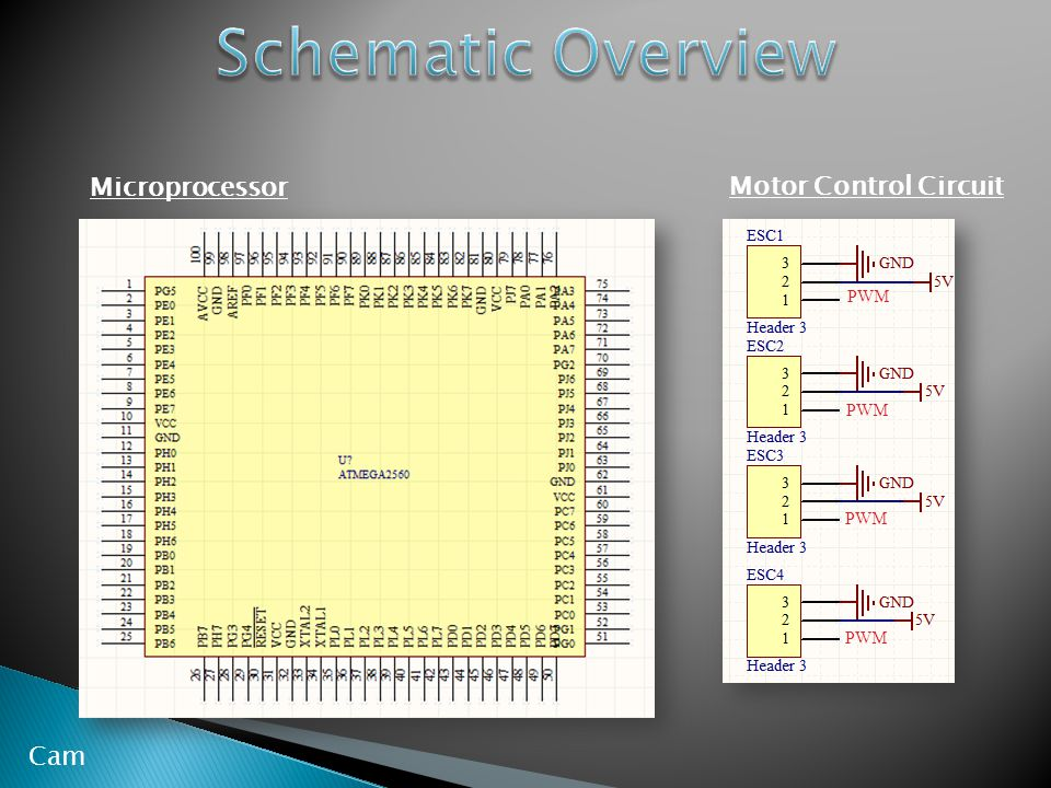 Motor Control Circuit Microprocessor Cam PWM
