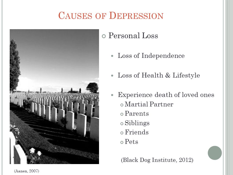 C AUSES OF D EPRESSION Personal Loss Loss of Independence Loss of Health & Lifestyle Experience death of loved ones Martial Partner Parents Siblings Friends Pets (Aanen, 2007) (Black Dog Institute, 2012)
