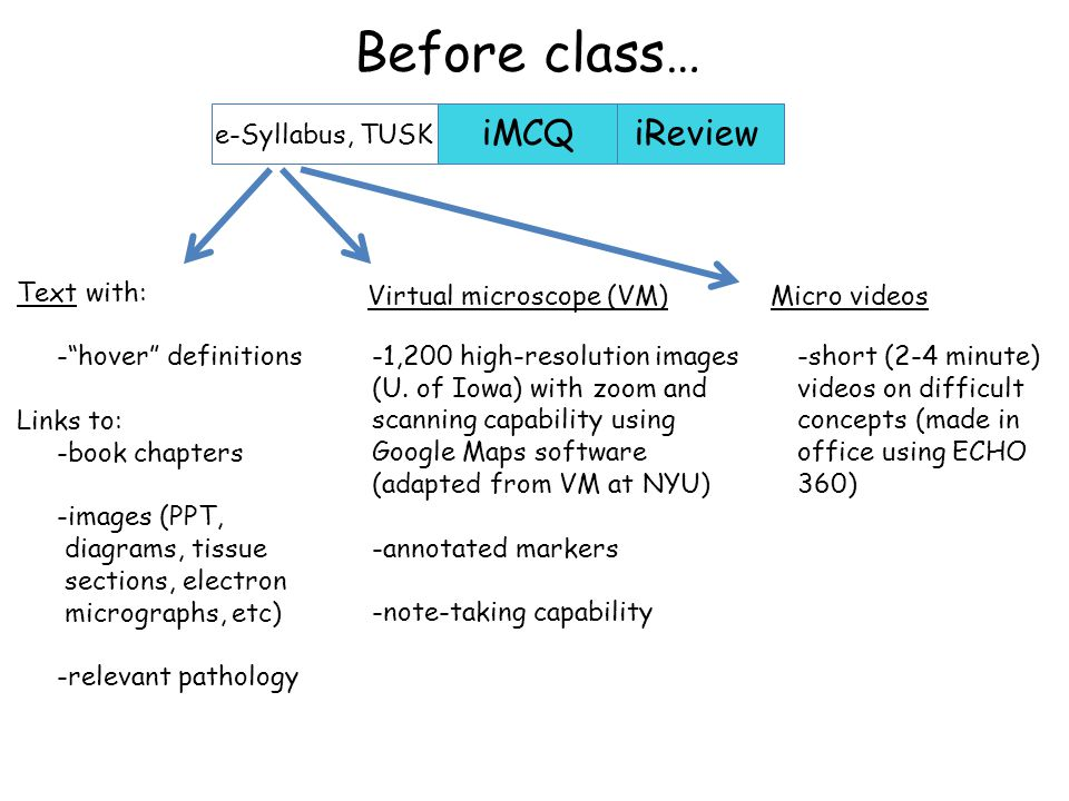iMCQiReview e-Syllabus, TUSK Before class… -large database of static images (with notes) -histological staining and other methods -hundreds of practice questions -lecture hall (full class) review recordings -links to other histology resources