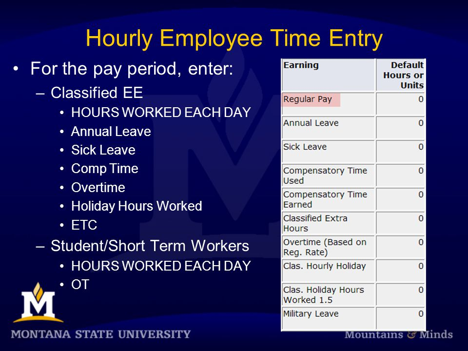 Hourly Employee Time Entry For the pay period, enter: –Classified EE HOURS WORKED EACH DAY Annual Leave Sick Leave Comp Time Overtime Holiday Hours Worked ETC –Student/Short Term Workers HOURS WORKED EACH DAY OT
