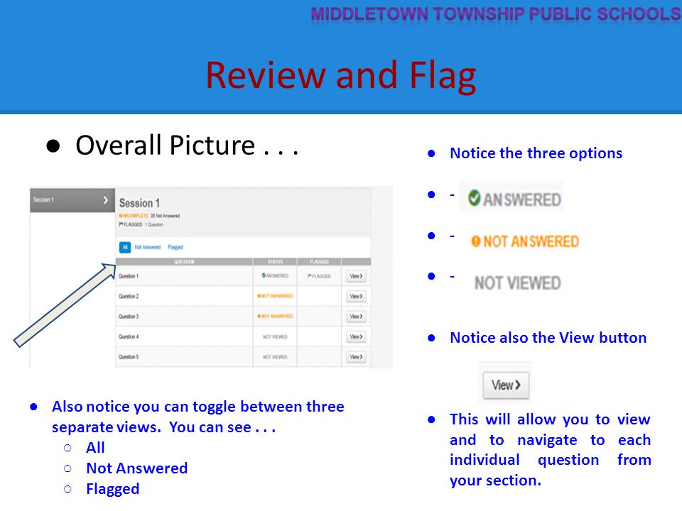 Review and Flag ● Overall Picture... ● Notice the three options ● - ● Notice also the View button ● This will allow you to view and to navigate to eac
