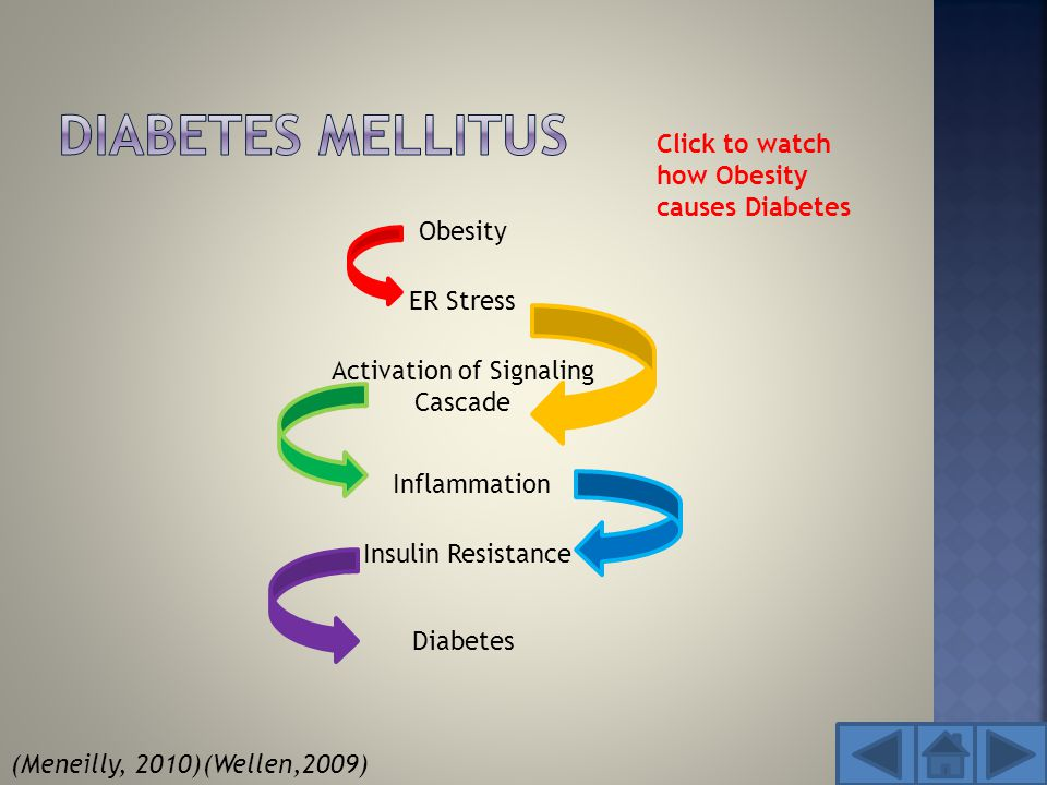 Activation of Signaling Cascade Diabetes Obesity Insulin Resistance ER Stress Inflammation Click to watch how Obesity causes Diabetes (Meneilly, 2010)(Wellen,2009)