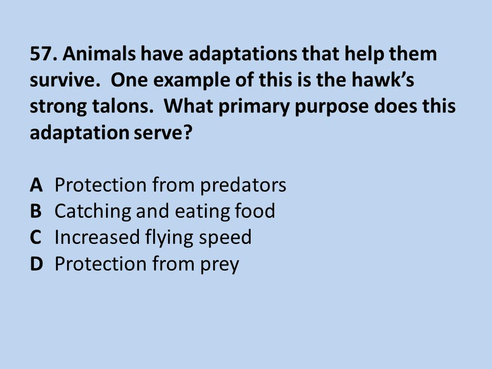 57.Animals have adaptations that help them survive.