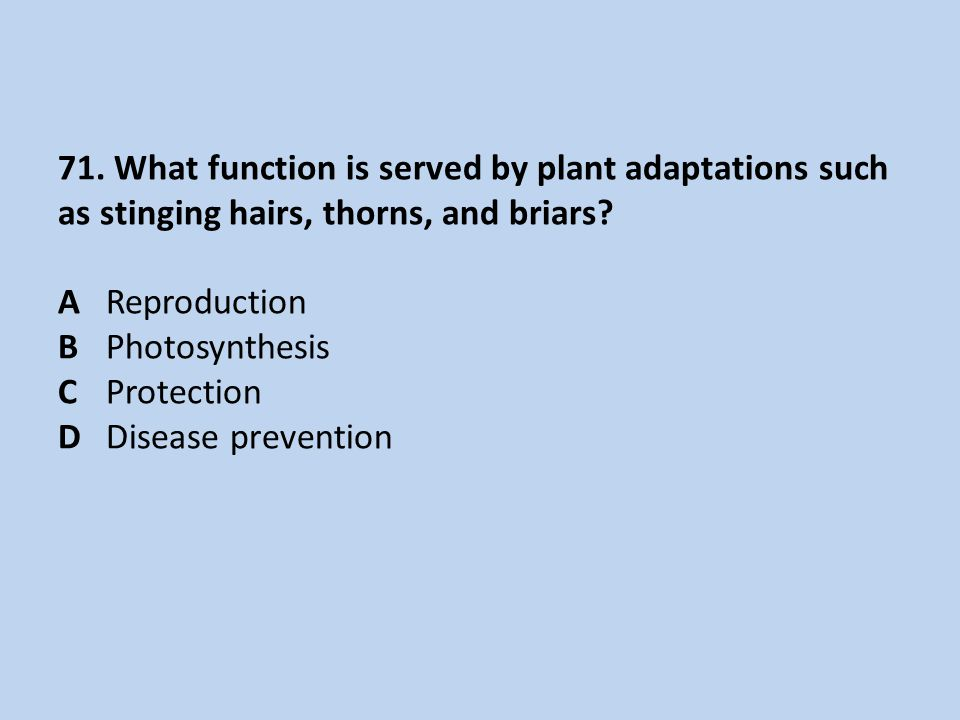 71.What function is served by plant adaptations such as stinging hairs, thorns, and briars.