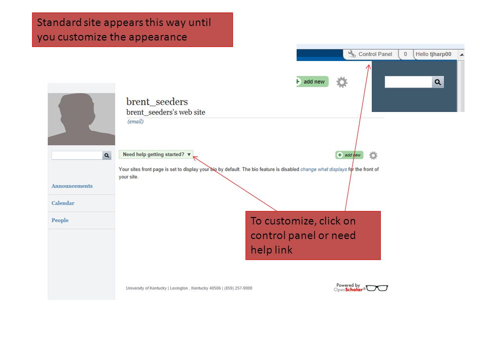 Standard site appears this way until you customize the appearance To customize, click on control panel or need help link