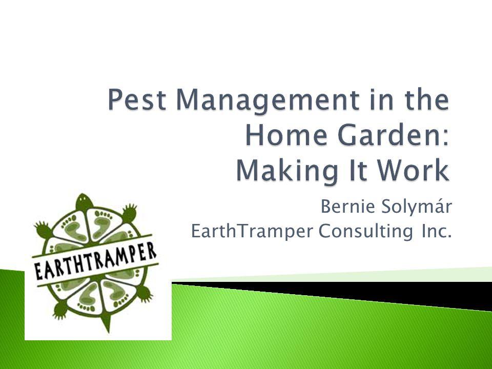 Time Pest Density Economic Injury Level Economic Threshold Pest Population