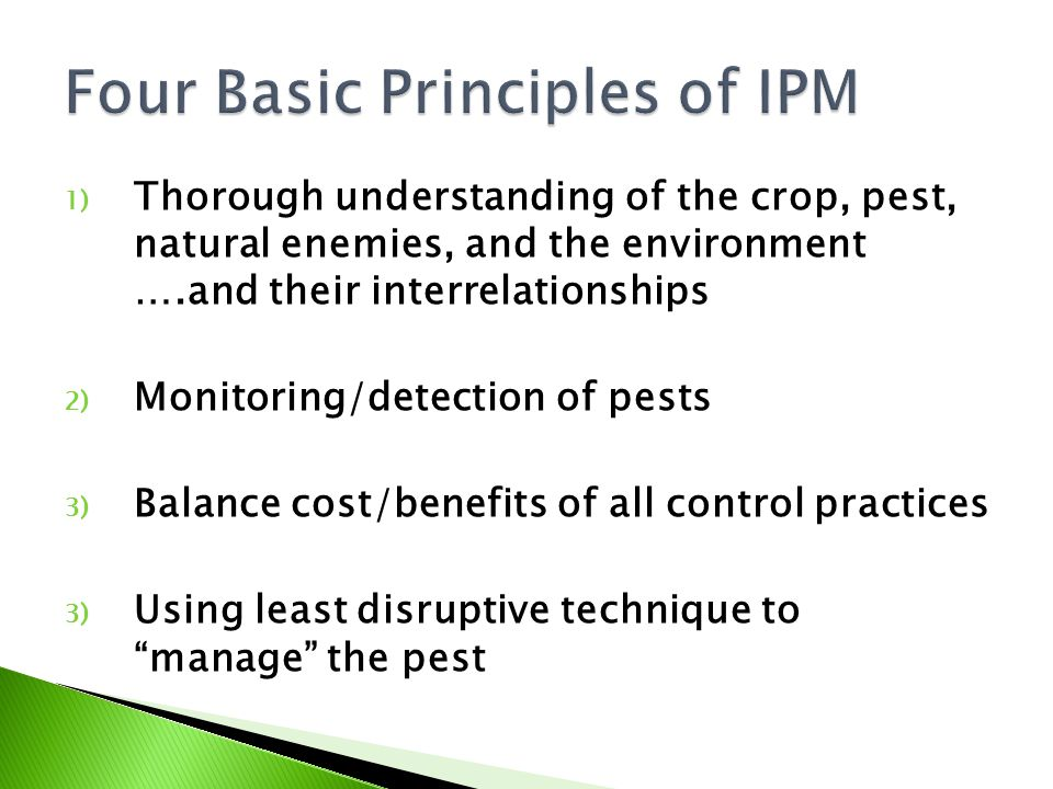 1) Thorough understanding of the crop, pest, natural enemies, and the environment ….and their interrelationships 2) Monitoring/detection of pests 3) B