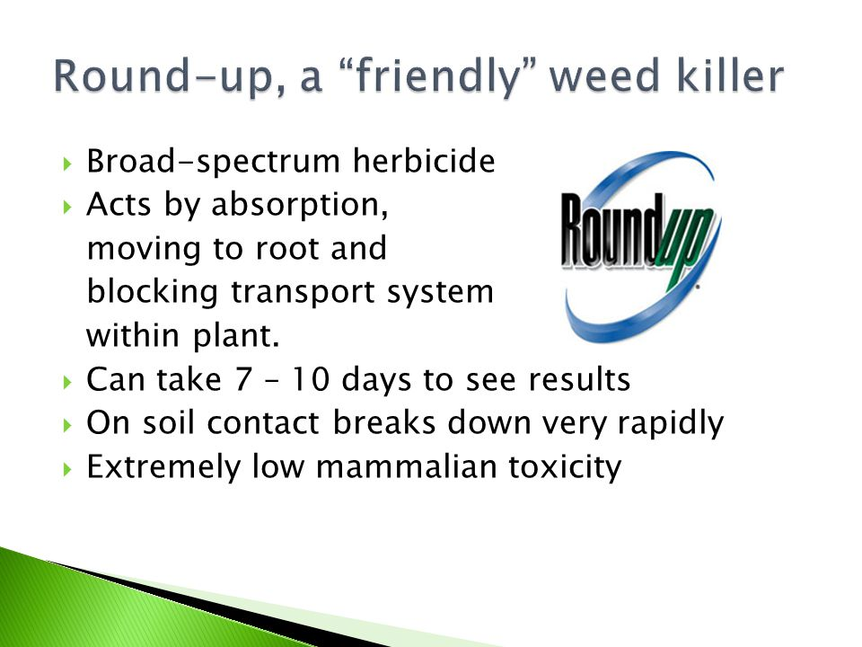  Broad-spectrum herbicide  Acts by absorption, moving to root and blocking transport system within plant.  Can take 7 – 10 days to see results  On