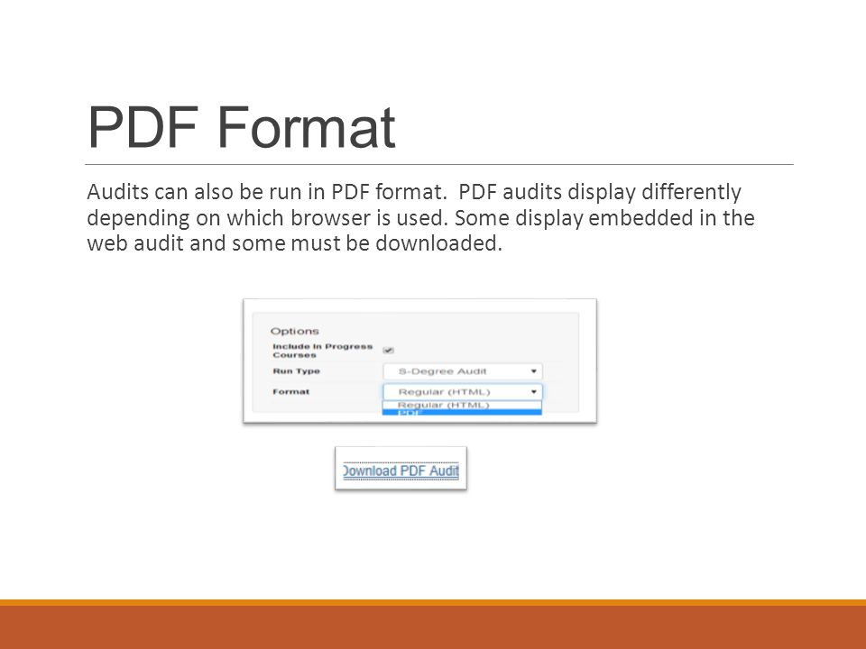 PDF Format Audits can also be run in PDF format.