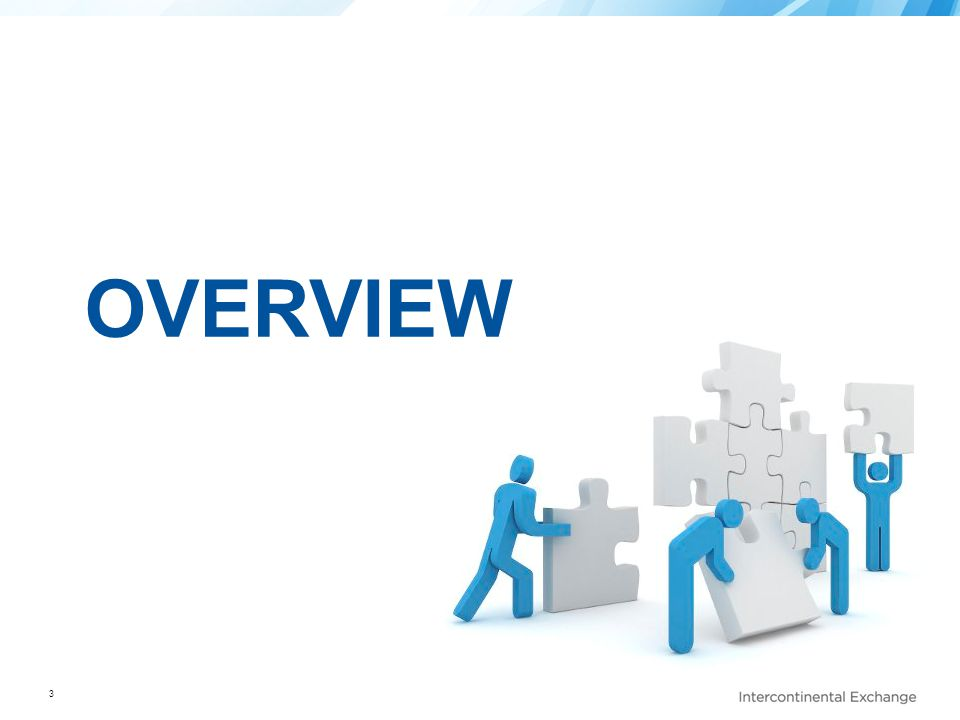 3 OVERVIEW