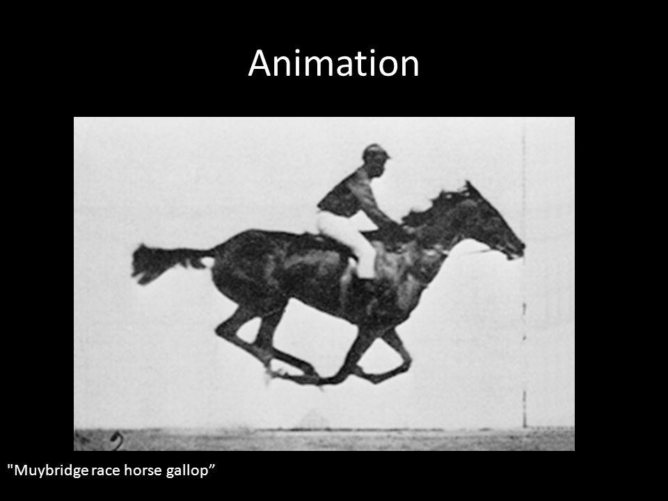 Animation Muybridge race horse gallop