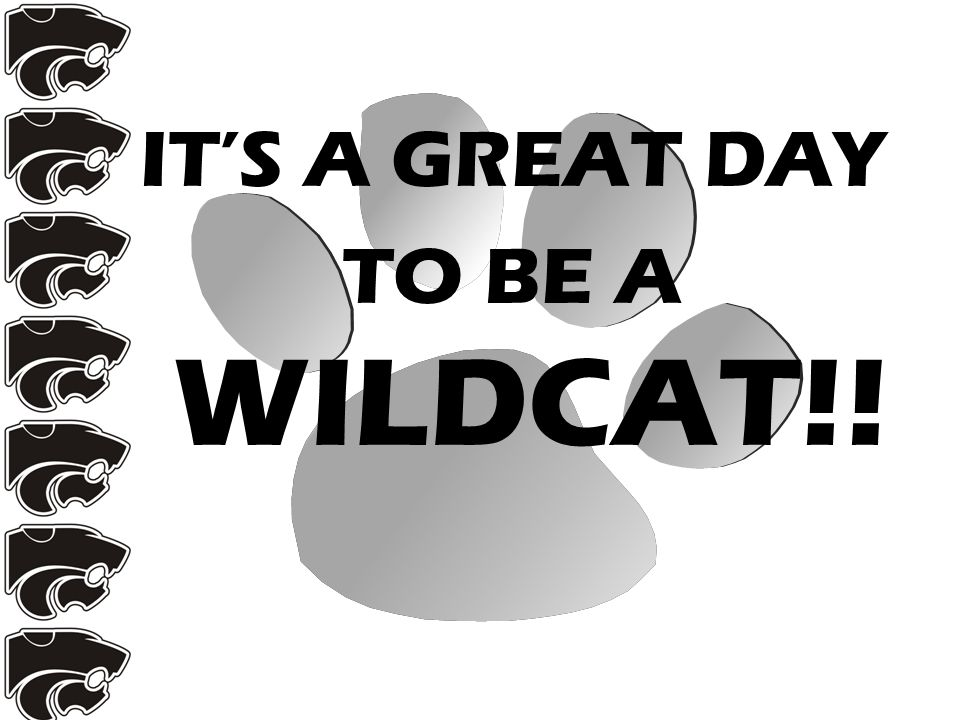 IT'S A GREAT DAY TO BE A WILDCAT!!