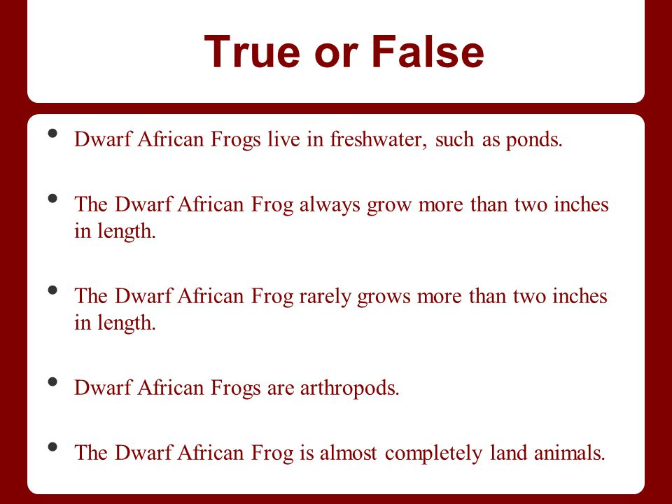 True or False Dwarf African Frogs live in freshwater, such as ponds. The Dwarf African Frog always grow more than two inches in length. The Dwarf Afri