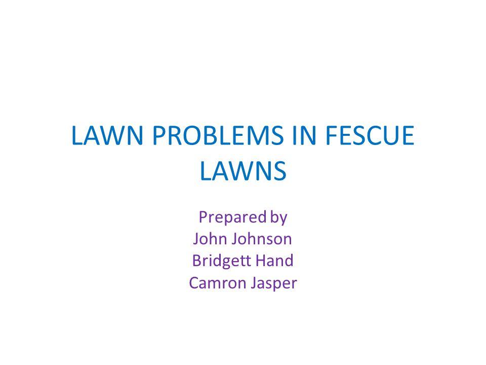 LAWN PROBLEMS IN FESCUE LAWNS Prepared by John Johnson Bridgett Hand Camron Jasper