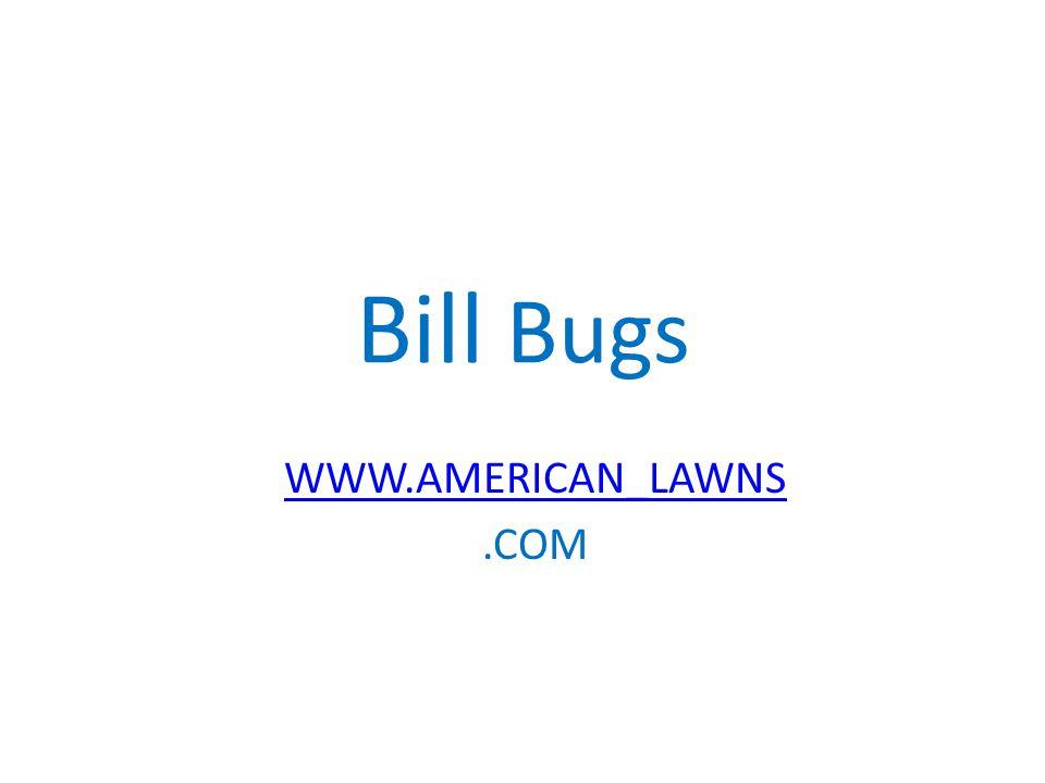 Bill Bugs WWW.AMERICAN_LAWNS.COM
