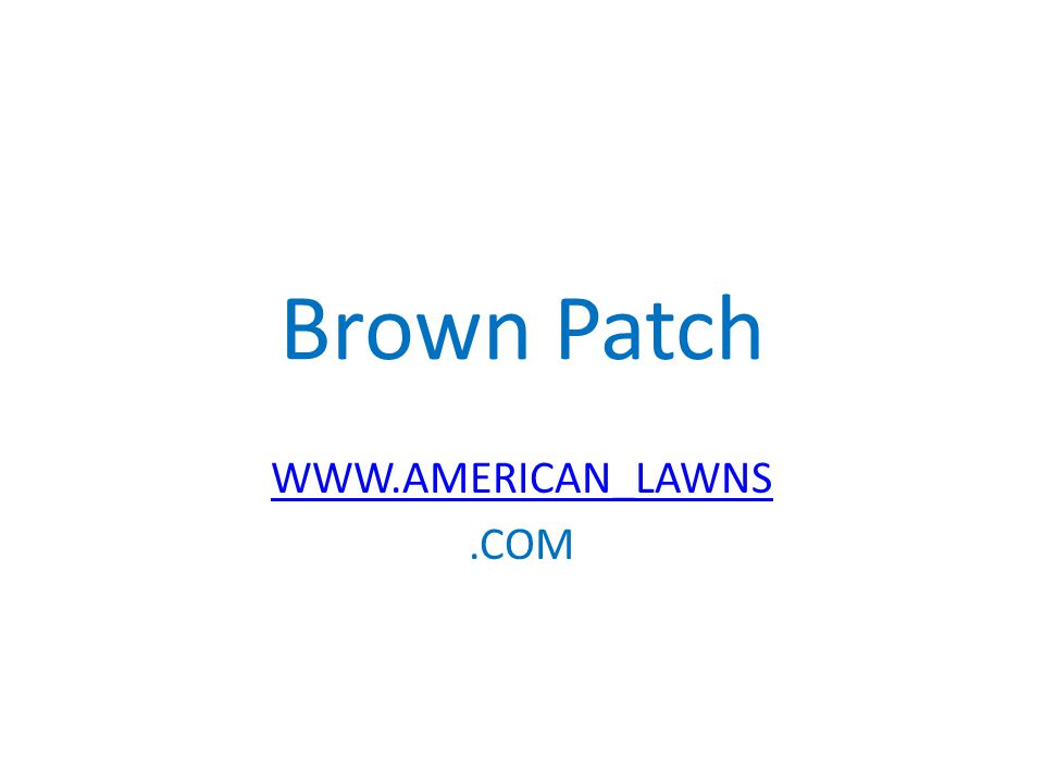 Brown Patch WWW.AMERICAN_LAWNS.COM