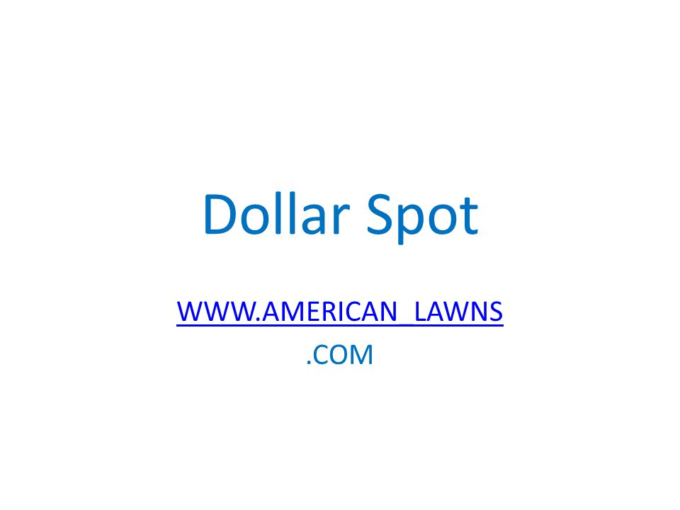 Dollar Spot WWW.AMERICAN_LAWNS.COM