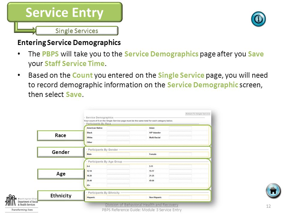 Service Entry Single Services Entering Service Demographics The PBPS will take you to the Service Demographics page after you Save your Staff Service Time.