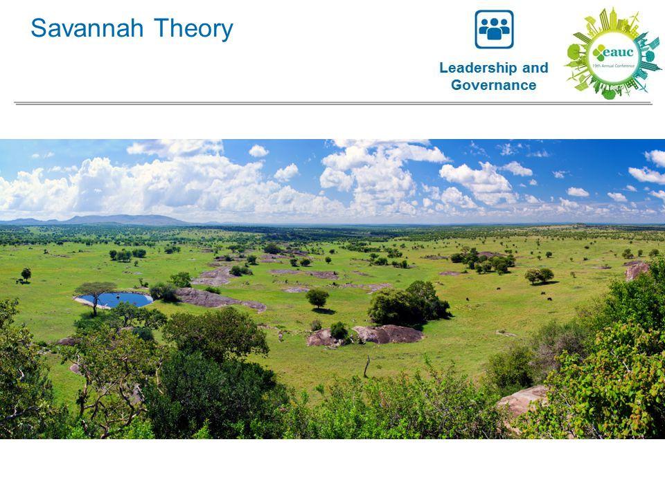 Savannah Theory