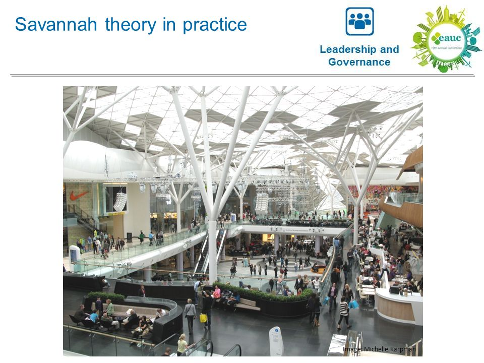 Savannah theory in practice Image: Michelle Karpman
