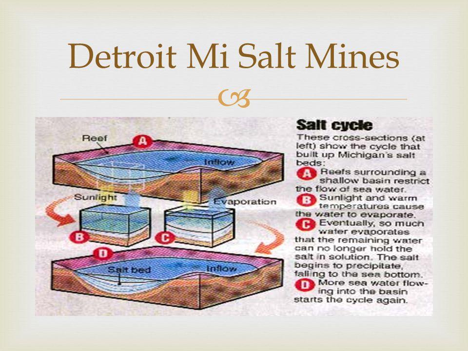  Detroit Mi Salt Mines